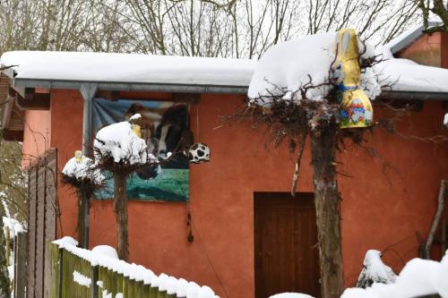 Osterhasen im Schnee